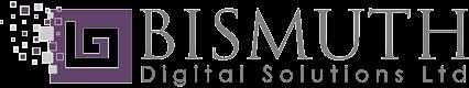 bismuth digital solutions ltd - web design in Birmingham